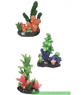 Décoration coraux colorés