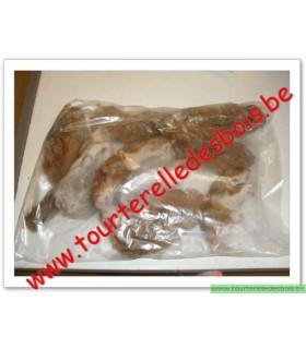 CONGELE - Hamster 1 Kg