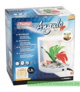 Aquarium betta angulo - 1.3 Litre