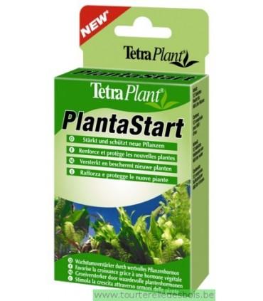 TETRAPLANT PLANTASTART 12 TABLETTES