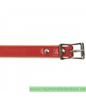 Collier cuir rouge 40 cm/16mm