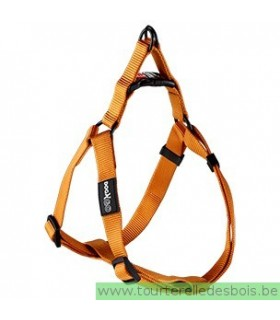 DOGX TO GO HARNAIS NYLON ORANGE - MEDIUM