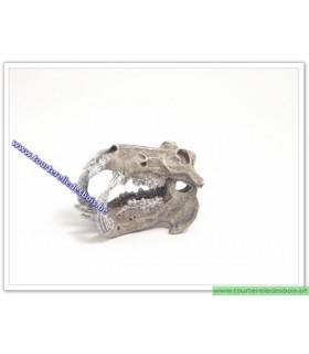 Crâne hyppopotame small