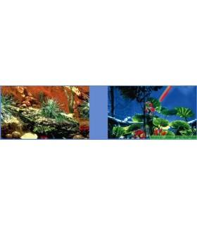 Décor forêt tropicale/cactus 50 CM