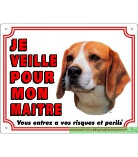 Panneau pvc Beagle