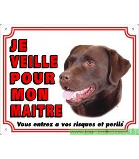 Panneau pvc Labrador retriever chocolat