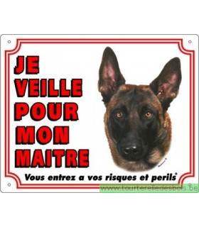 Panneau pvc Berger belge malinois