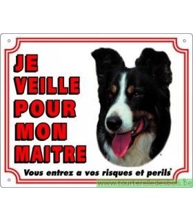 Panneau pvc Border collie