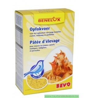 BEVO Patée élevage jaune pour canaris 1Kg