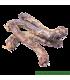 PLOSPAN Copeaux de bois 4kg