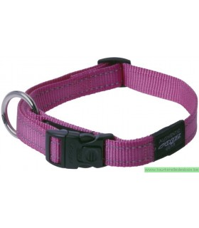 DOGX TO GO COLLIER NYLON ROUGE - LARGE