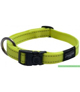 DOGX TO GO COLLIER NYLON VERT - LARGE