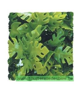 ZM Plante Medium Amazonian Phyllo [BU-21]